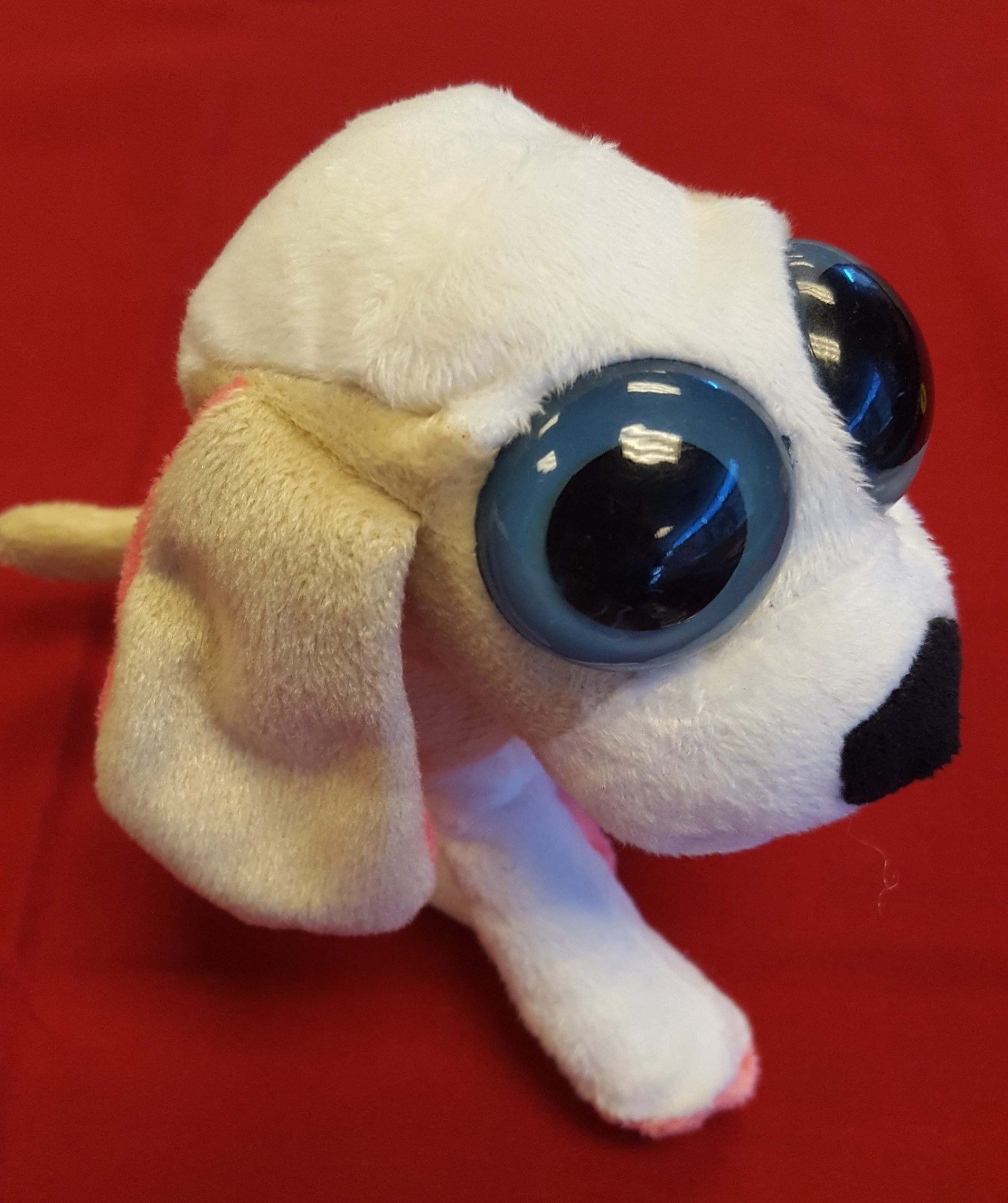 Big Eye Dog Plush