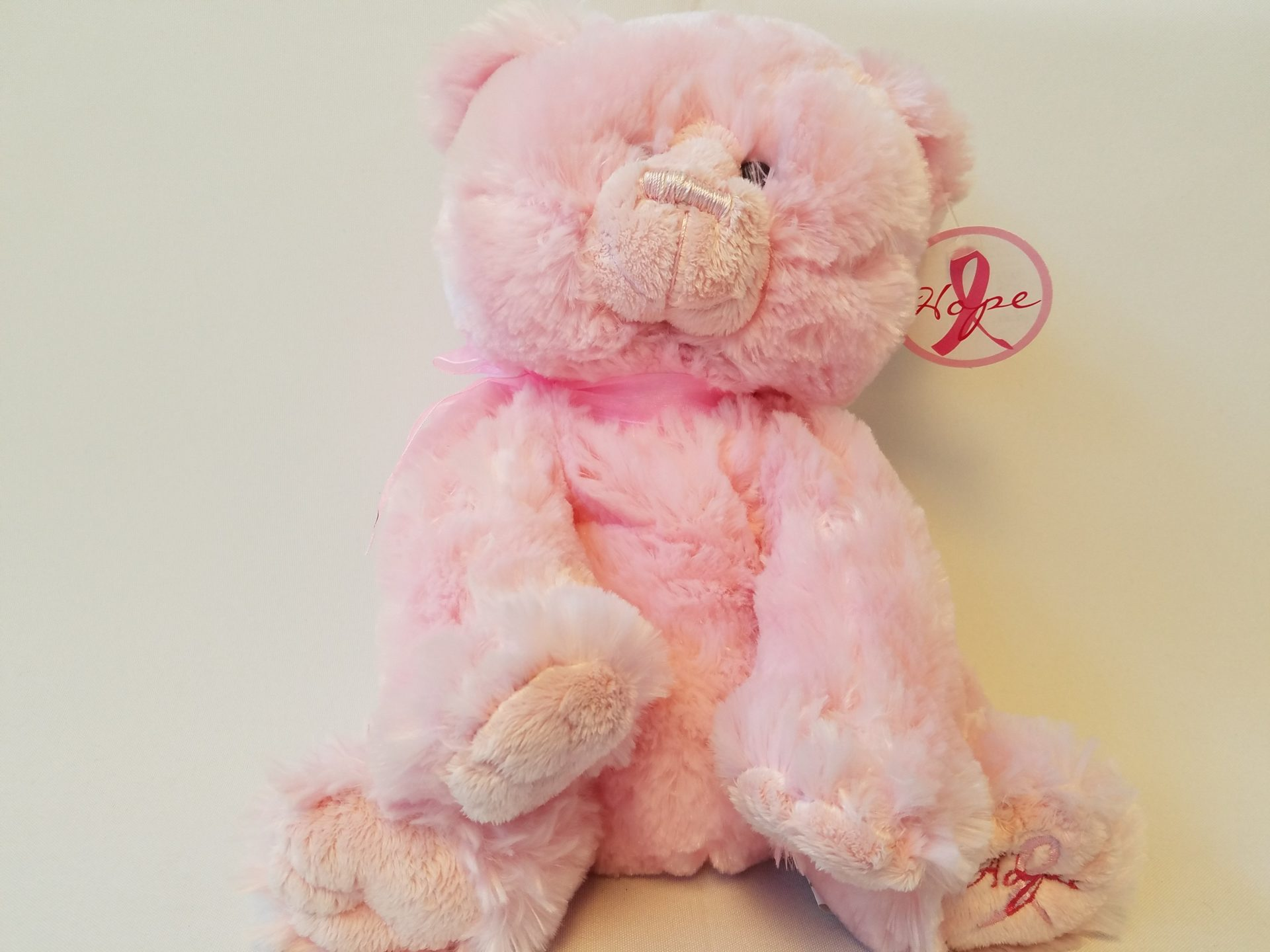 Pink Breast Cancer Bear