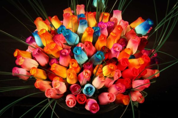1600 Wooden Roses